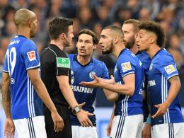 Bentaleb-Sperre: Schalke verzichtet auf Berufung