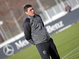 Trainingslager und Testspiele: So plant der VfB