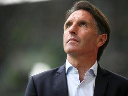 Alles klar: Labbadia bleibt Trainer in Wolfsburg