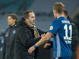Rückholaktion: Hahn kehrt nach Augsburg zurück