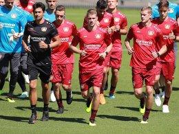 Lars Bender: Was Leverkusen jetzt braucht