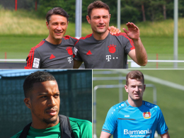 Die kicker-Umfrage zur neuen Bundesliga-Saison