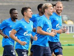 Höwedes wieder im Schalker Mannschaftstraining