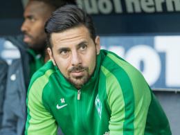 Pizarros Rückkehr ist ein zwiespältiger Luxus