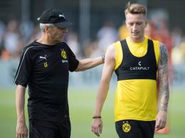 Favre erwartet Vorbildfunktion von Neu-Kapitän Reus
