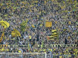 Studie: Dortmund beliebter als Bayern