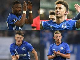 Debütanten-Ball: Die Schalke-Youngster im kicker-Check