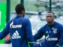Baba und Tekpetey vertreten Schalke in Gabun