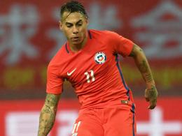 Hoffenheim erwartet Vargas zurück