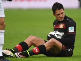Leverkusen ohne Chicharito beim HSV