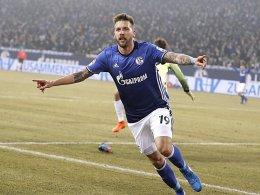 Schalke und Burgstaller - das passt