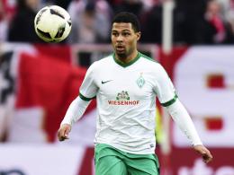 Kniebeschwerden: Gnabry fehlt in Leverkusen