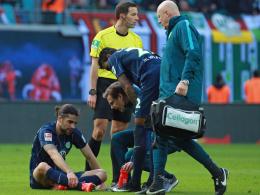 Wolfsburg: Keine OP bei Rodriguez