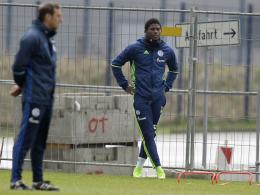 Embolo und Schalke träumen