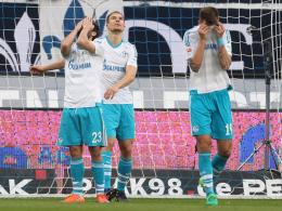 Schalke 04 - ein gern gesehener Gast