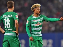 Bremen: Gnabry und Moisander wieder im Training