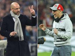 Bosz oder Stöger - wer wird BVB-Trainer?
