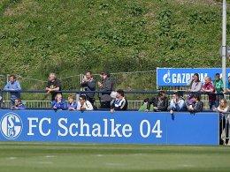 Schalke zurrt zwei Tests fest