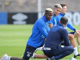 Mendyl: Warum es Schalke und nicht England wurde