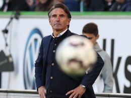 Labbadia will den Ball auch gegen Bayern