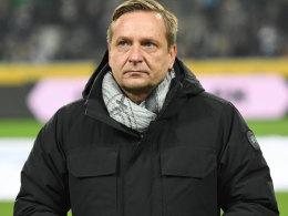 Schiri-Kritik: Heldt droht Strafe durch den DFB