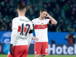 VfB findet