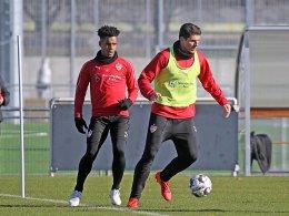 Gomez vor Rückkehr in die Startelf