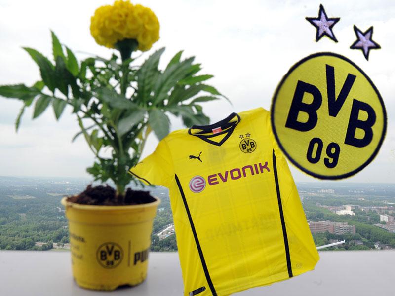 BVB präsentiert neues Trikot