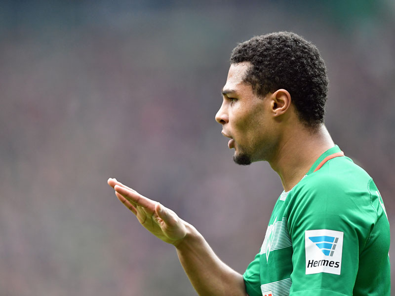 Verpflichtet für 2017/18: Die Neuen der Bundesligisten