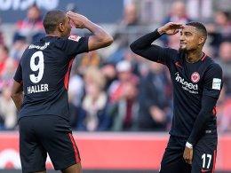 Haller stürzt Köln ins Chaos