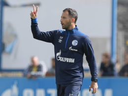 McKennie, Skrzybski und Teuchert lassen Schalke jubeln