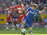 Halil Altintop (FC Schalke 04) im Zweikampf mit Zé Roberto (Bayern München)