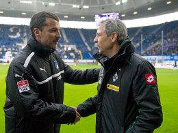 Willkommen zurück: Lucien Favre begrüßt Hoffenheims neuen Coach Marco Kurz.