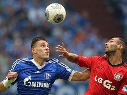 Schalkes Szalai und Leverkusens Toprak behalten den Ball im Blick.