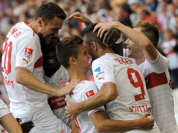 Ibisevic (2.v.re.) bejubelt mit seinen Mitspielern einen seiner drei Treffer