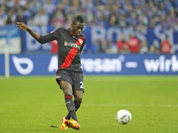 """""""Ein Spieler mit riesigem Potenzial"""" - sagt FCI-Coach Tomas Oral über Neuzugang Danny da Costa."""