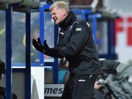 Schonfrist: Effenberg bleibt Paderborns Coach