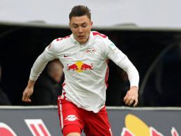 Auf Leihbasis: Auch Quaschner verstärkt den VfL