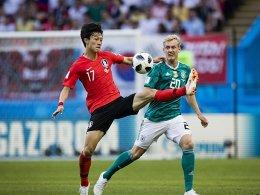 Ein Hauch von WM in Kiel: Störche holen Lee