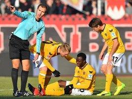 Dynamo vorerst ohne Gogia und Berko