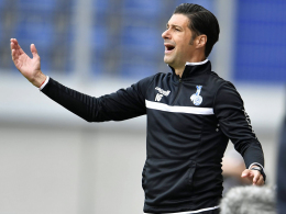 Duisburgs Coach Gruev: