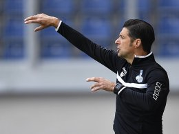 Gruev unter Druck: Vorbild ist die DFB-Elf
