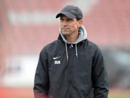 Steinbach: Zwei Neue f�r Chef-Coach Mink
