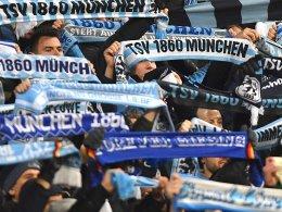 1860: Mit über 12.000 Fans zum FCN II