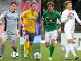 Vier Neue für die Münchner Löwen