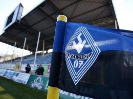 Waldhof Mannheim reagiert mit Sofortmaßnahmen