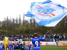 Neustrelitz reicht Unterlagen für die Oberliga-Lizenz ein