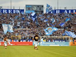 Die Löwen-Rückkehr in Bildern