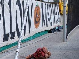 Dynamo-Fans sorgen f�r geschmacklosen Eklat
