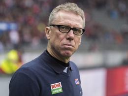 Stöger über Hoffenheim: